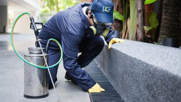 benefits-of-professional-pest-control