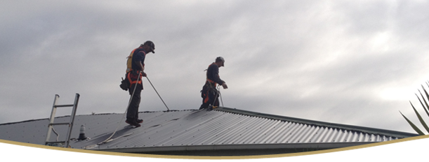 Auckland Roofers